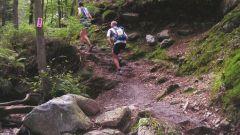 Calendrier trail Belgique   Trail en Juin 2020 > OHM Trail (Aywaille)