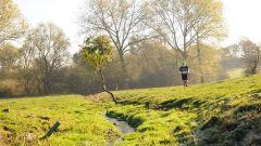 Calendrier trail Belgique   Trail en Octobre 2020 > Trail de l'Orneau (Bossière)
