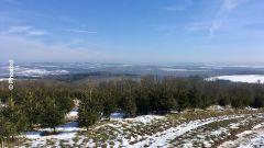 Calendrier trail Belgique   Trail en Mars 2021 > Trail de l'Ourthe (Hamoir)