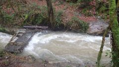 Calendrier trail France Auvergne-Rhône-Alpes Cantal Trail en Janvier 2021 > Trail Hivernal Saint-Etienne-de-Maurs (Saint-Etienne-les-Maurs)