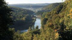 Calendrier trail Belgique   Trail en Mars 2020 > Trail des Veneurs (Fays-Les-Veneurs)