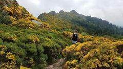 Calendrier trail France Auvergne-Rhône-Alpes Loire Trail en Juin 2020 > Pilatrail (Véranne)