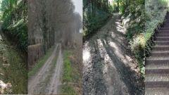 Calendrier trail Pays-Bas   Trail en Janvier 2021 > Poort naar het Heuvelland (Beek)