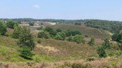 Trail kalender Nederland   Trailrun in Oktober 2020 > Posbank Trail (Velp)