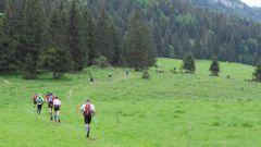 Calendrier trail France   Trail en Juin 2020 > Transju'trail (Hauts-de-Bienne)