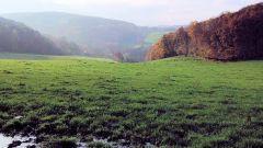 Calendrier trail Belgique   Trail en Mars 2020 > Trail de la Primavera (Andenne)