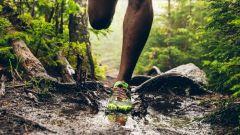 Calendrier trail Belgique - Trail en Avril 2019 : Redcross Trail du Ninglinspo à 4920 Nonceveux