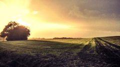 Calendrier trail Pays-Bas   Trail en Septembre 2021 > RunForestRun Springendal (Ootmarsum)
