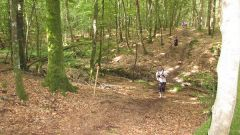 Trail kalender Frankrijk Bretagne Ille-et-Vilaine Trailrun in Juni 2021 > Course des Sabotiers (Bazouges La Pérouse)