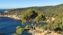 Calendrier trail France Provence-Alpes-Côte d'Azur Var Trail en Novembre 2021 > Les Saint Cyriennes (Saint Cyr sur mer)