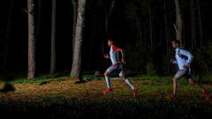 Calendrier trail Belgique   Trail en Décembre 2020 > STC Night Trail (Cerfontaine)