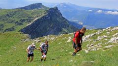 Calendrier trail France   Trail en Juin 2020 > Trail du Circuit de la Sure (Voiron)