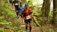 Trail calendar France Pays de la Loire Maine-et-Loire Trailrunning race in September 2019 > Trail Lys Haut Layon (Vihier)