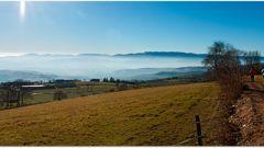 Trail calendar France   Trailrunning race in January 2022 > Trail Hivernal des Coursières (St Martin En Haut)