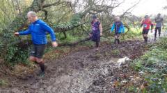 Calendrier trail France   Trail en Novembre 2020 > Trail de la Vallée des Moulins (Lanhouarneau)