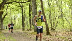Trail calendar France Île-de-France Yvelines Trailrunning race in May 2021 > Trail des Cerfs (La Queue-les-Yvelines)
