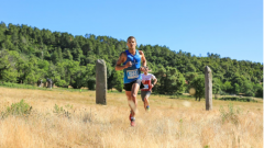 Trail calendar France Provence-Alpes-Côte d'Azur  Trailrunning race in May 2020 > Trail des Maures (Collobrières)