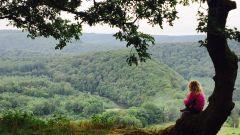 Calendrier trail Belgique   Trail en Mai 2020 > Trail du Jambon (Membre-sur-Semois)