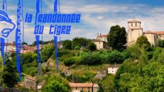 Trail calendar France Pays de la Loire Vendée Trailrunning race in October 2019 > Trail du Tigre (Mouchamps)