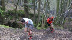 Trail calendar Belgium   Trailrunning race in March 2020 > Trail des jonquilles  (Honnelles)