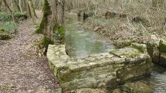 Trail kalender Frankrijk Nouvelle-Aquitaine Charente Trailrun in Maart 2020 > TLSA - Trail La Saint Amantoise (Saint-Amant-de-Boixe)