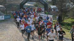 Calendrier trail France   Trail en Juin 2020 > Course du Printemps et Trail du Canton Vert (Plan de Cuques)