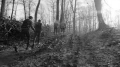 Trail kalender Frankrijk Hauts-de-France Pas-de-Calais Trailrun in Februari 2020 > Trail des Givrés (Lapugnoy)