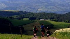 Trail kalender Frankrijk Auvergne-Rhône-Alpes Loire Trailrun in Maart 2020 > Trail des Salamandres (Sorbiers)