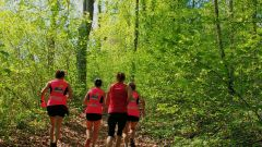 Trail calendar Belgium   Trailrunning race in September 2019 > La Trailette (Marchin)