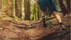 Trail calendar France Bourgogne-Franche-Comté  Trailrunning race in July 2020 > Trail de la Forêt d'Othe (Chailley)