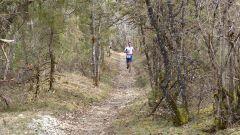 Calendrier trail France Nouvelle-Aquitaine Corrèze Trail en Février 2021 > Trail de la Truffe (Chartier-Ferrière)