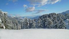 Trail calendar France Corse Corse-du-Sud Trailrunning race in January 2020 > Restonica Trail Blanc (Vergio)