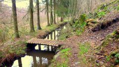 Calendrier trail Belgique   Trail en Août 2015 > Trail des Vieux Moulins (Lierneux)