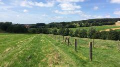 Calendrier trail Belgique   Trail en Août 2015 > Trail run vlaamse ardennen (Ronse, Ruddersveld 7)