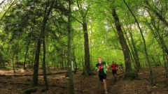 Trail kalender Frankrijk Hauts-de-France  Trailrun in September 2019 > Pyramidale Trail (Wingles)