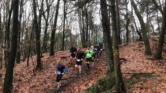Calendrier trail Pays-Bas - Trail en Décembre 2019 : Wisent Winter Trail à 7339 Ugchelen