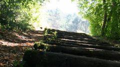 Calendrier trail Belgique   Trail en Mars 2020 > Trail de l'Ecole Chouette (Saint-Remy)