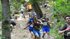 Calendrier trail Belgique   Trail en Mai 2021 > Trail Vinci (Chaumont-Gistoux)