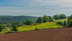 Trail kalender België   Trailrun in Juli 2021 > Trail du Petit Papillon (Hameau La Forge (Mormont))
