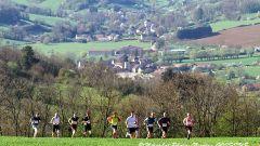 Trail calendar France   Trailrunning race in April 2020 > Les Trails de la Voie Romaine (Sombernon)