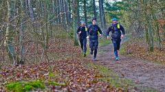 Trail calendar the Netherlands   Trailrunning race in February 2020 > Run the Parks (Velserbroek)