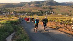 Calendrier trail France - Trail en Avril 2019 : ULTRA BEAUJOLAIS VILLAGE TRAIL à 69460 LE PERREON