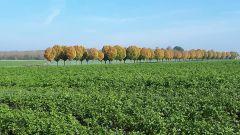 Trail kalender Frankrijk Hauts-de-France Aisne Trailrun in April 2020 > Couv'run Trail (Couvron-et-Aumencourt)