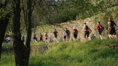Calendrier trail France Provence-Alpes-Côte d'Azur Vaucluse Trail en Avril 2020 > La Luberonde (Oppède)