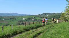 Calendrier trail France   Trail en Avril 2021 > Trail de l'Abbaye de Savigny (Savigny)