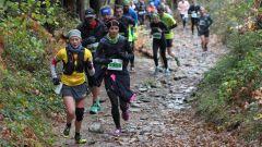 Trail kalender Frankrijk Auvergne-Rhône-Alpes Haute-Loire Trailrun in November 2021 > Trail des Sucs (Yssingeaux)