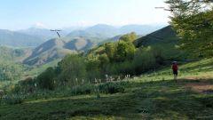 Trail kalender Frankrijk Nouvelle-Aquitaine Pyrénées-Atlantiques Trailrun in April 2021 > Trail du Barétous (Arette)