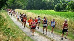 Trail kalender Frankrijk Pays de la Loire Sarthe Trailrun in Juni 2020 > Trail du Belvédère (72210 Chemiré-le-Gaudin) (Chemiré-le-Gaudin)
