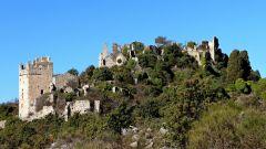 Trail calendar France Provence-Alpes-Côte d'Azur Alpes-Maritimes Trailrunning race in April 2020 > Course du Muguet (06) (Cantaron)