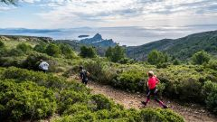 Trail kalender Frankrijk Provence-Alpes-Côte d'Azur Bouches-du-Rhône Trailrun in November 2020 > Course nature de la Ciotat (La Ciotat)